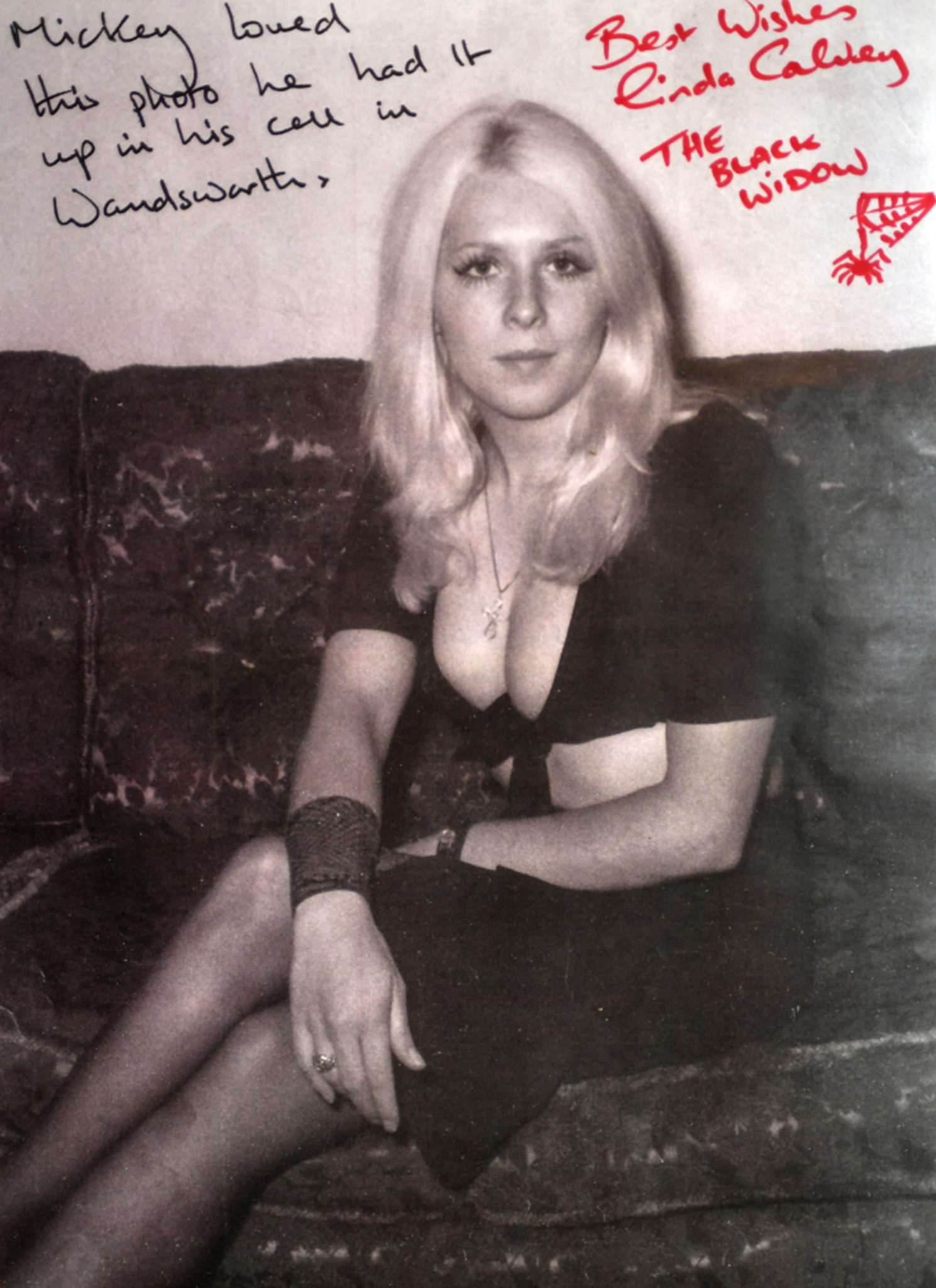 A young blonde woman looks at the camera.